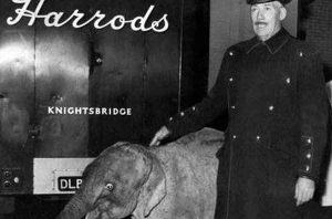 Un elefante en Harrods